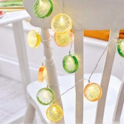 Tropical Citrus Fruit Slice Fairy String Lights