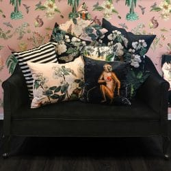 Vanilla Fly Black Ape Velvet 50cm Large Cushion