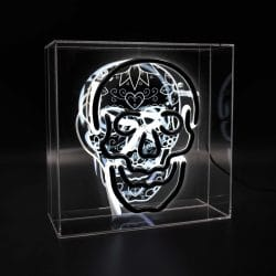 Reverse Neon White Skull Acrylic Box Light with Printed Graphic