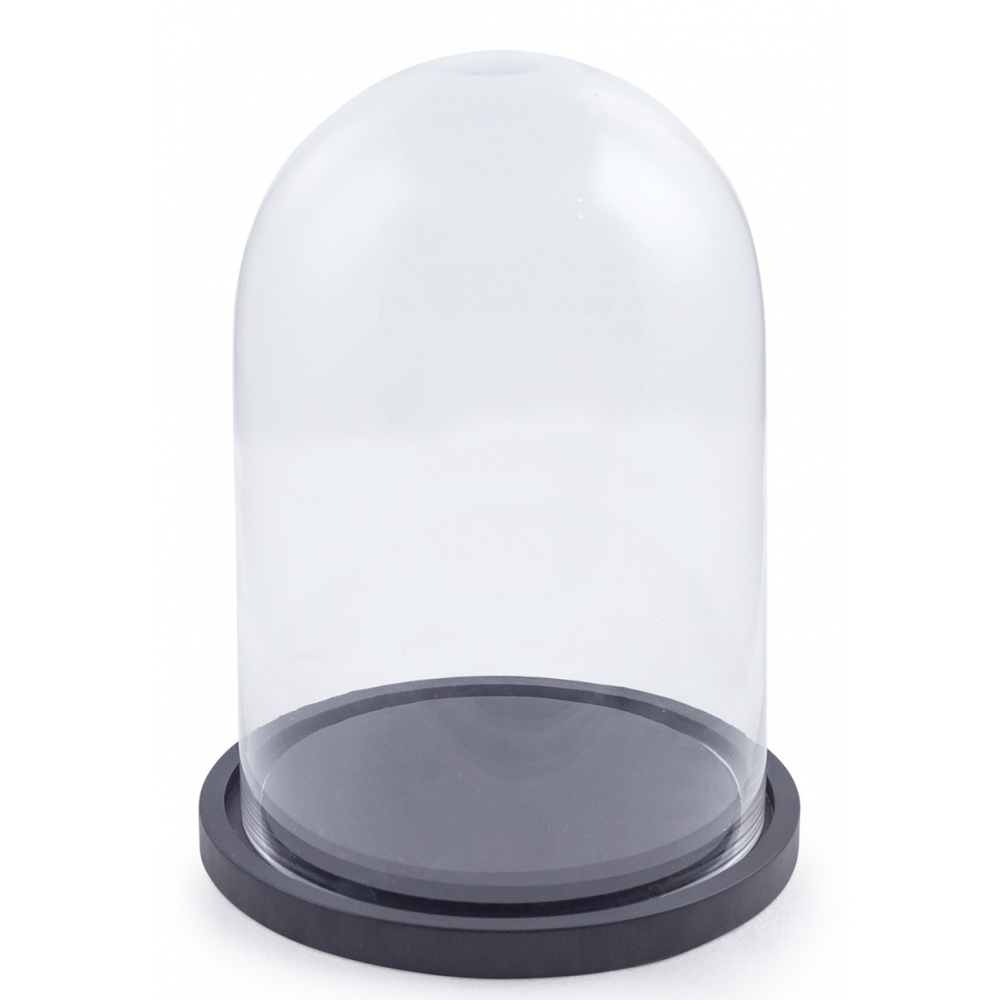 Gl Display Cloche Dome Bell Jar With Wooden Base Small
