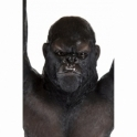 Hurn & Hurn Discoveries: Gorilla Side Table