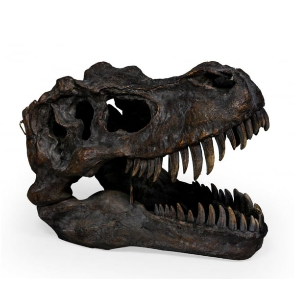 T Rex Head Decor Wall