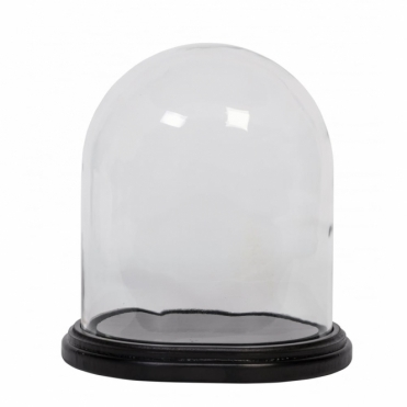 Glass Display Dome Bell Jar with Wooden Base - Medium