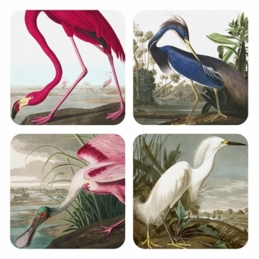 Drink Coasters - Flamingo, Heron, Spoonbill & White Heron - Set of 4