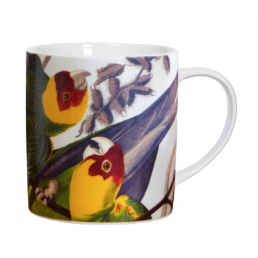 Parrot Mug - Illustrated Gift Box