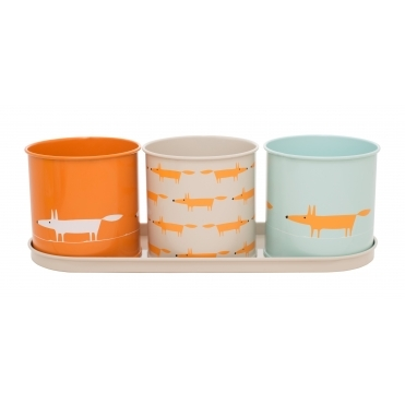 Mr Fox Herb / Plant Pots with Tray - Set of 3