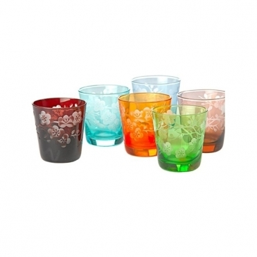 Blossom Tumbler Set of 6 Glasses
