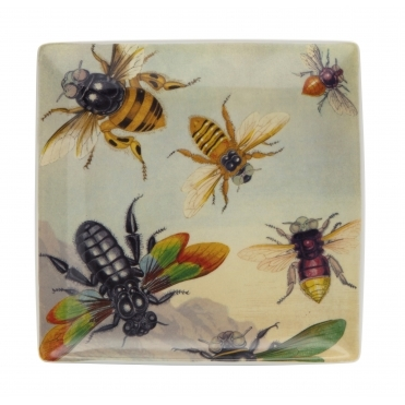 Rainbow Bugs Trinket Tray Large - Illustrated Gift Box