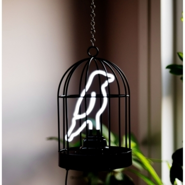 Neon Bird In A Cage Lamp