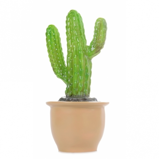 Tall Cactus Table Lamp / Night Light