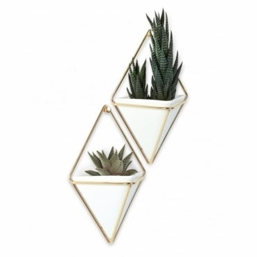 Trigg Wall Vessel White/Brass Small Set of 2