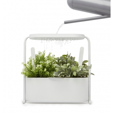 Giardino Herb Plant Stand with Integrated Watering