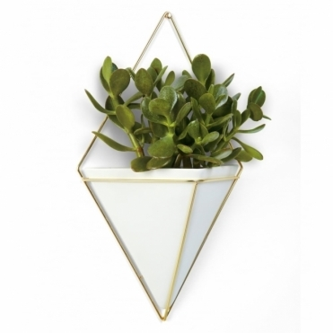 Trigg Wall Vessel White/Brass Large