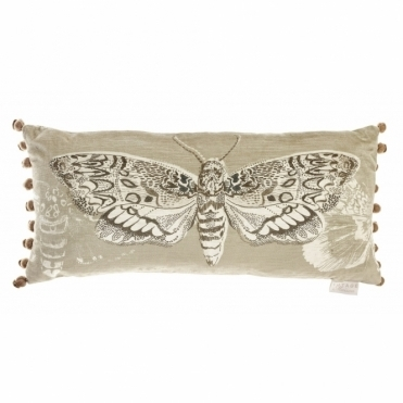 Tinea Rectangular Cushion - Moth